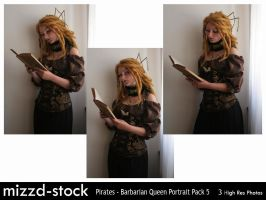 Pirates - Barbarian Queen Portrait Pack 5 by mizzd-stock