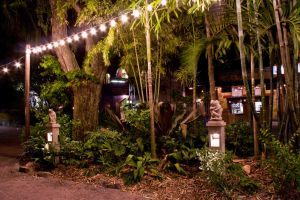 Animal Kingdom at Night 57 by AreteStock