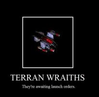 Terran Wraiths Poster by FacepalmPunch