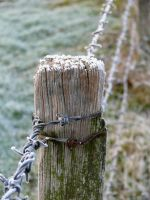 Nothing But a Fence by amipal