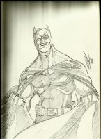 Batman by mikereisner
