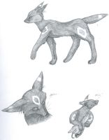 Umbreon Sketches by SherokuTakari