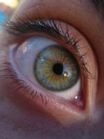 hazel eye by tristenisrad