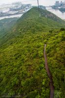 NGONG Ping 360 - 2 by Z-Designs