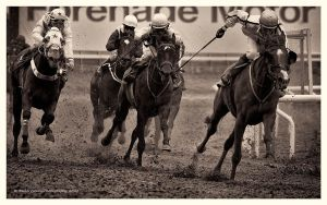 A Day At The Races -Time To Go by AndersStangl