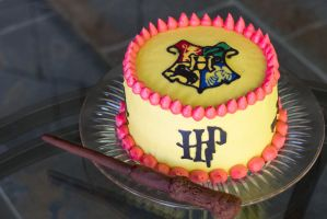 Harry Potter Cake by spidrz06
