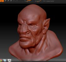 Zbrush Practice Bust2 by Blunderbolt