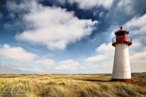 Lighthouse by Nightline