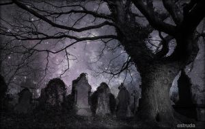 A Magical Night In The Cemetery by Estruda
