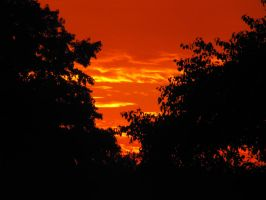 04-10-10 Sunset 4 by Herdervriend