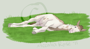 Lazy Daisy - Animated by AccaliaRose