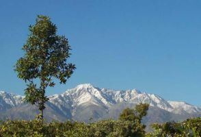 Snow on Mt. Baldy by shelly349