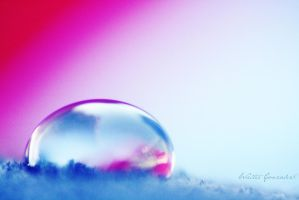 Cotton Candy. by WalterGeee