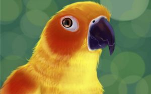 Sun Conure:. by Delusional-bird