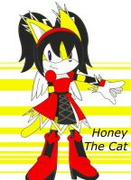 Honey the Cat by Destiny-The-Hedgimon