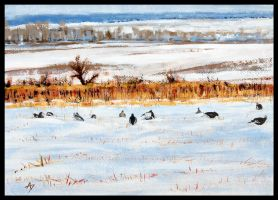Feeding on the winter field by h-i-l-e-x