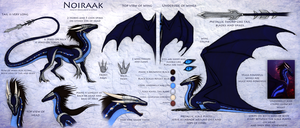 Noiraak Reference Sheet by Enigmatic-Ki