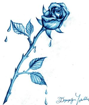 Blue Rose by SyberDeath