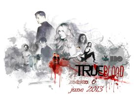 True blood, poster 6 season by Tasha507