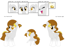 Cinnamon Twist Reference Sheet by CharIie