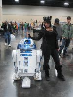 CATWOMAN AND R2D2 by WhiteFox89