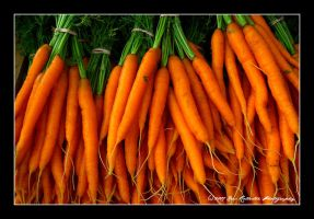 Carrots by runnerboy49