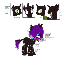 semi offical ref for Cheivana by UnInvitingCuddles