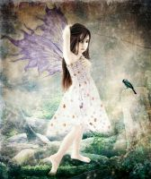 fairy by brovic