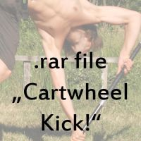 Cartwheel Kick. by syccas-stock