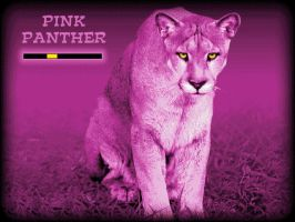 Mau Collection: Pink Panther by Palii