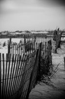 A fence at the beach by ahley