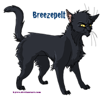 WARRIORS- Breezepelt by Kytes
