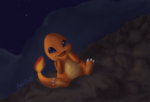 004 Charmander by PokeGirl5