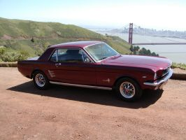 Golden Gate Mustang by mean