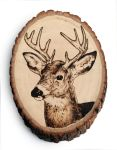 Deer - Pyrography by lost-nomad07