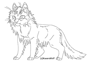 Long Hair Standing Cat Template by KasaraWolf