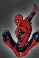 Spider-man May14th2013 By Shatteredweb by SpiderGuile