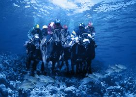 underwater horse race by charliemonster