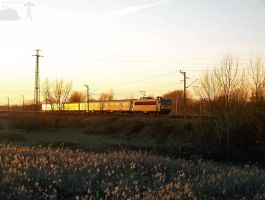 Train in the sunset 2 by morpheus880223