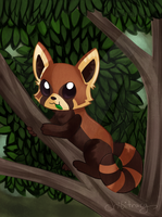 Red panda by Sunnynoga