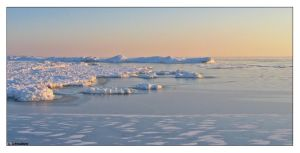 Soft Ice by Limaria