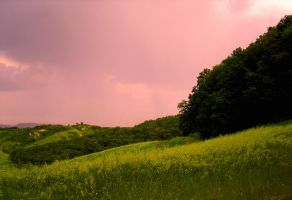 Pink sky over the green hills of Tuscany by cortomaltese219