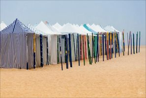 Colors of Summer by Jack-Nobre