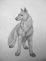 Wolf Traditional by Cougar28