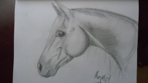 horse sketch by Rodeo-rogue
