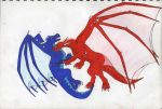 Saphira And Thorn Fighting by FadingIntoDark