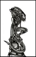 Xenomorph by sweet-666