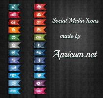 Social Media Icons by apricum
