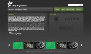 Web Interface January 23 2008 by zedi0us