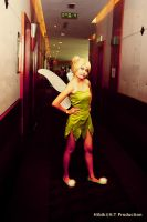 Tinkerbell - Peter Pan by tabeck
